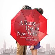 Film: Rainy day in New York
